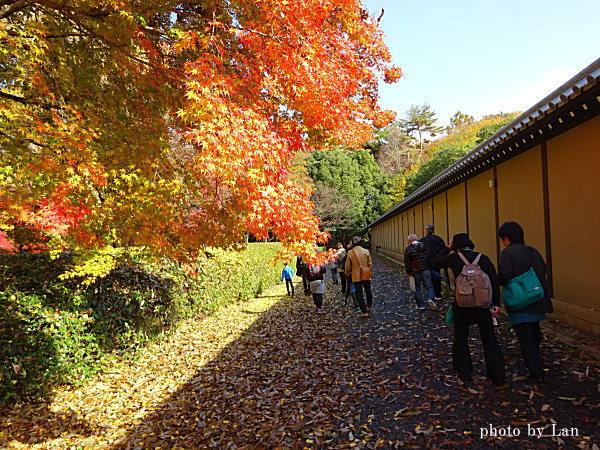 kyototour201411-47